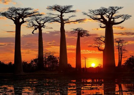 Tour in madagascar panorama tramonto